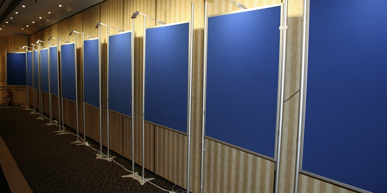 Largest size poster board